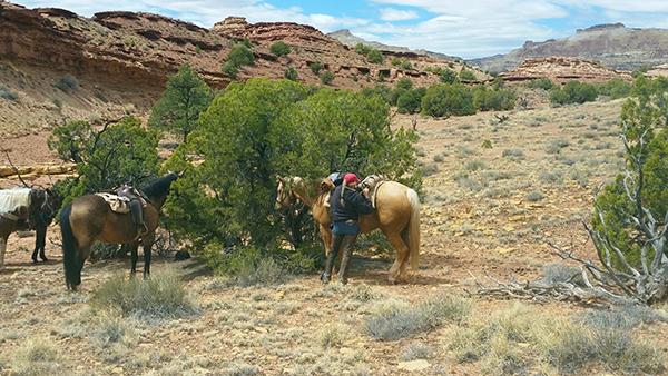 Hondoo Utah lunch camping horseback