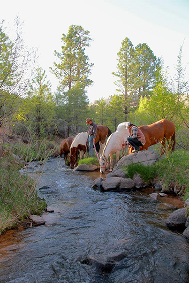 Hondoo Rivers Horseback Inn to Inn Utah