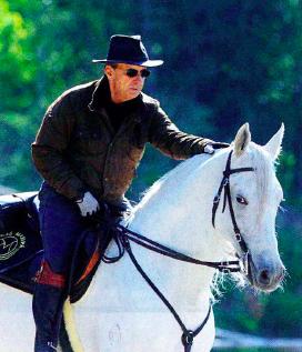 marchador horse europe