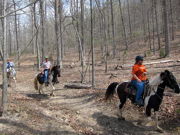 horseback riding George Washington National Forest Virginia