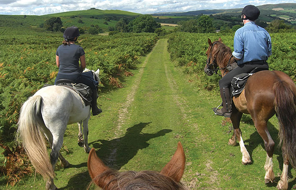 horse riding holidays cambrian mountains wales