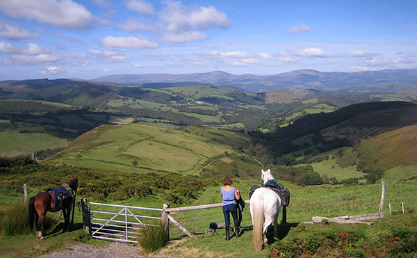 horse riding wales with freerein riding holidays