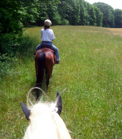 Horseback riding in Sprague Land Preserve Connecticut