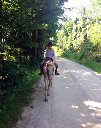 horse riding mountain top inn