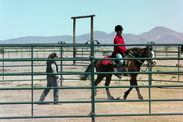 horseback riding round pen arizona
