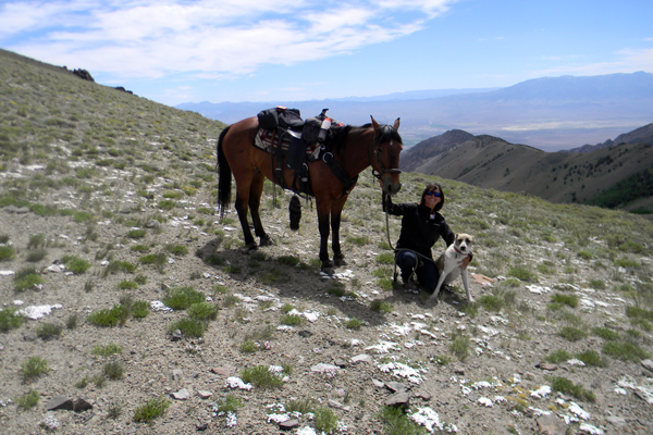 horseback riding nevada american discovery trail