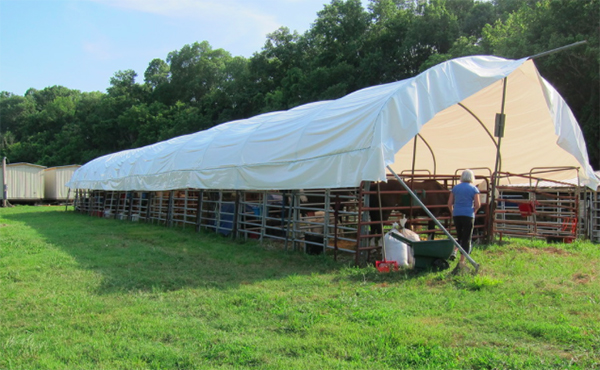 horse stalls Buffalo River Tennessee
