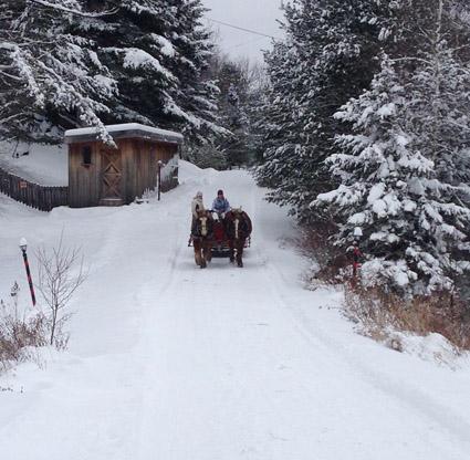 horse drawn sleigh vermont