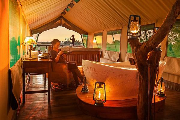 horse safari tent okavango delta