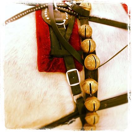Horse Sleigh Bells