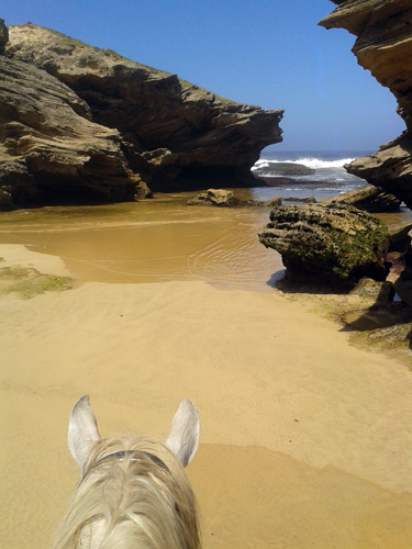south africa horseback beach