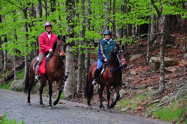 horse-back-riders-in-acadia-national-park