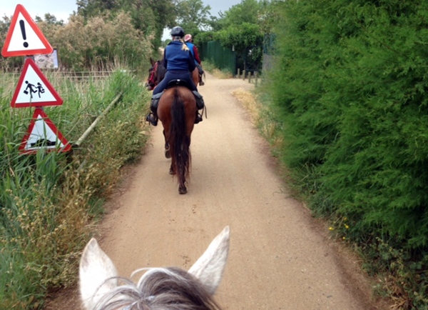 horseback riding beach spain catalonia
