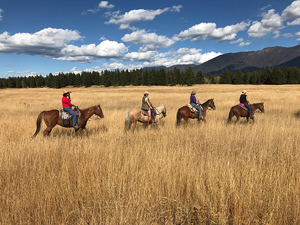 horseback riding in Big Sky
