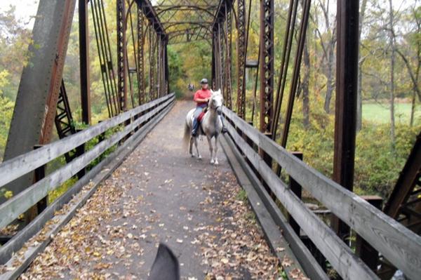 horseback riding new jersey bridge