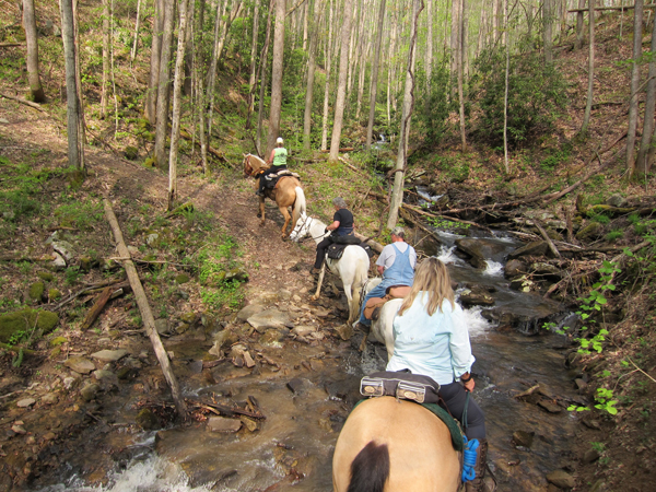 horseback riding at camp creek state park and forest in west virginia