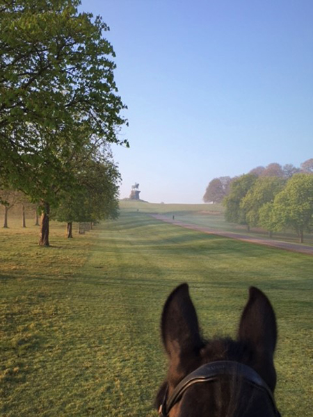 between the ears view from horseback of statue at windsor great park uk