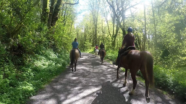 horseback-riding-ogrady-trails-enumclaw-washington