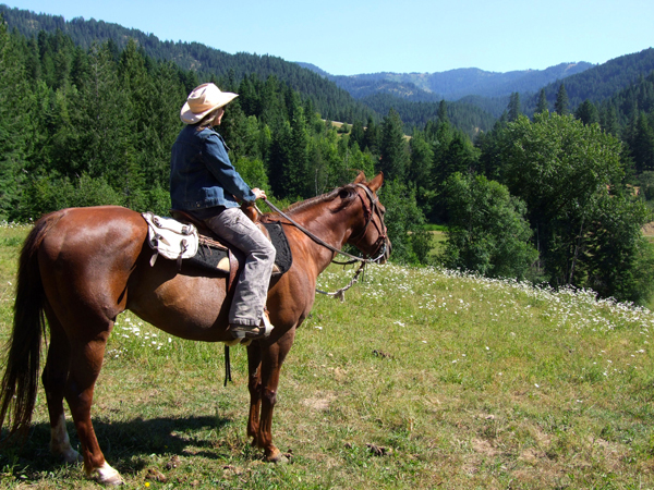 Red Horse Mountain Ranch Idaho Horseback