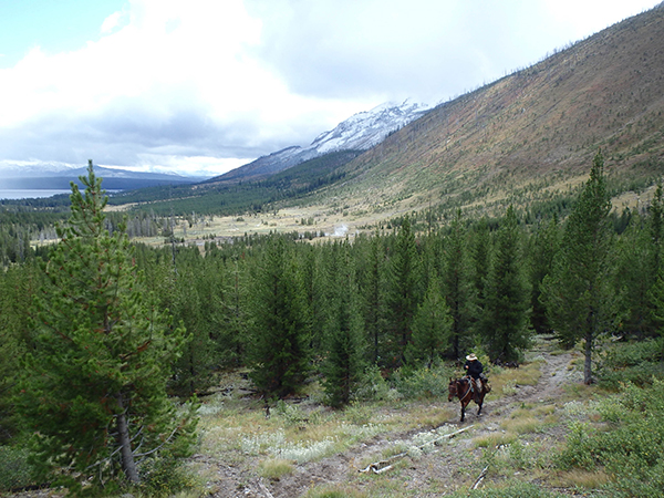 person horseback riding in yellowstone national park