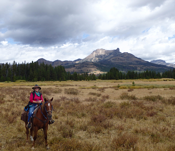 woman on horse near colter peak yellowstone national park