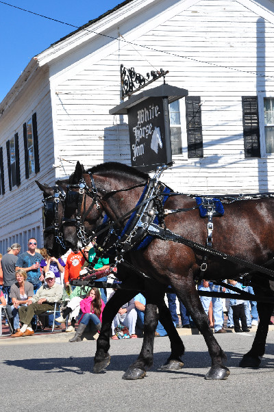 Celebration of the Horse in Metamora, MI