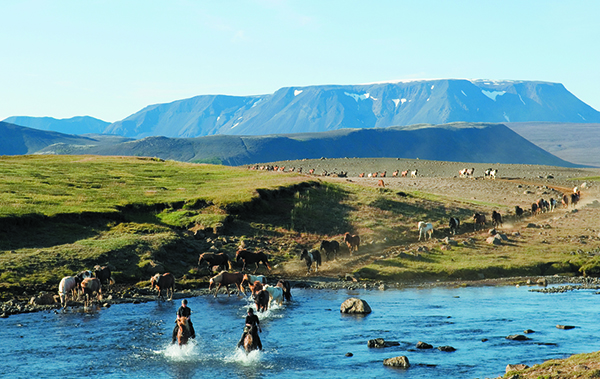 Iceland riding vacations