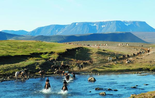 iceland glacier horse tour