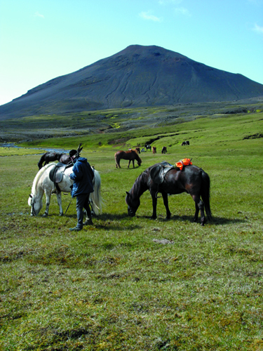 iceland volcano horse riding vacation