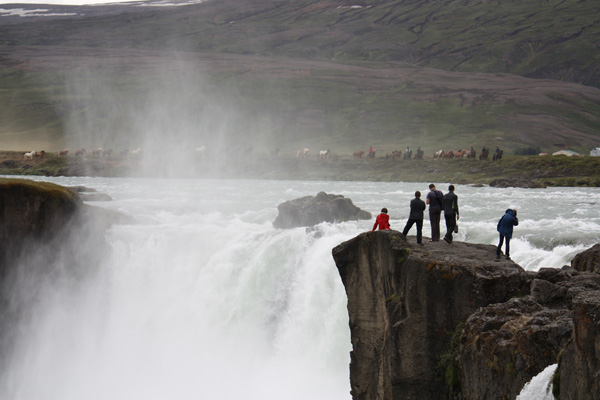 Iceland Horse Riding Tour waterfall