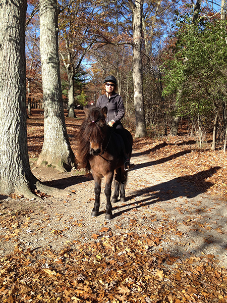woman riding icelandic horse at borderland in massachusetts