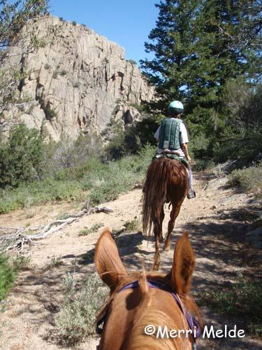 idaho trail riding horseback