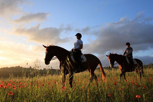 Il Paretaio Horseback Riding Wildflowers