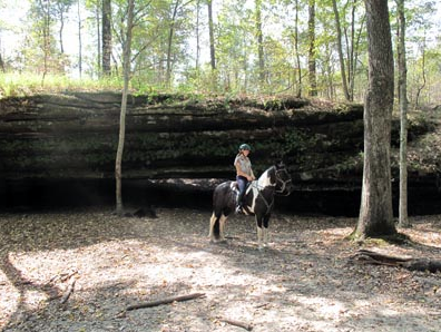 illinois horseback riding