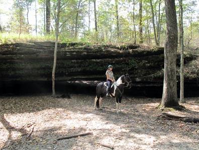illinois horseback riding
