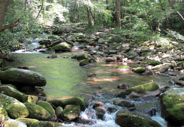 cherokee national forest tennessee