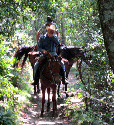 cherokee forest horse trails