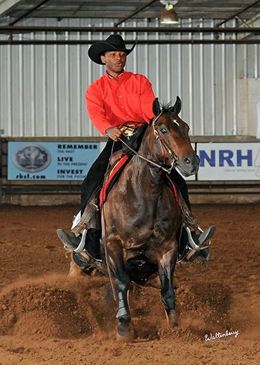 Interscholastic Equestrian Association Western