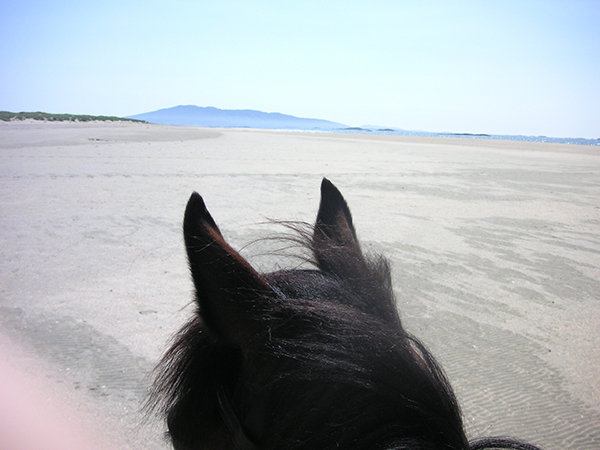 Clew Bay Trail Horseback Riding Ireland