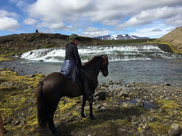 Ishestar Iceland horseback riding