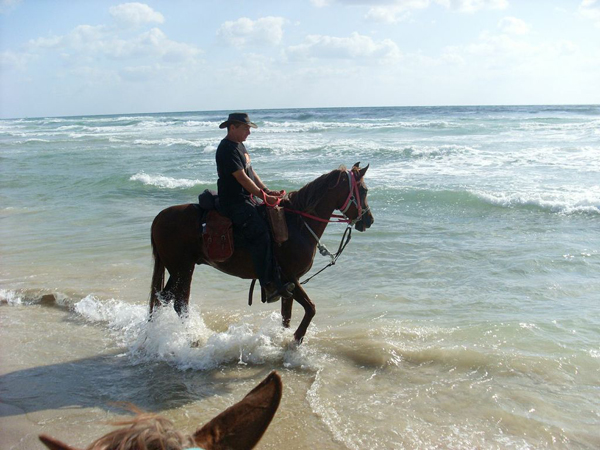 israel horseback riding on the beach