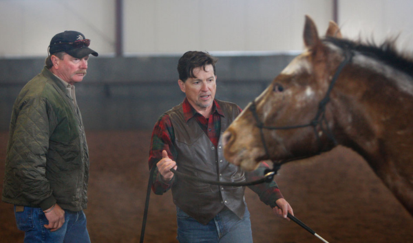 jimmy smith equestrian horse clinician
