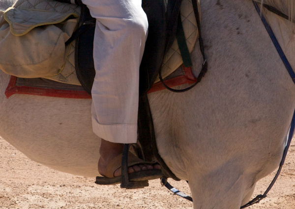 Jordan Bedouin horseman in sandals