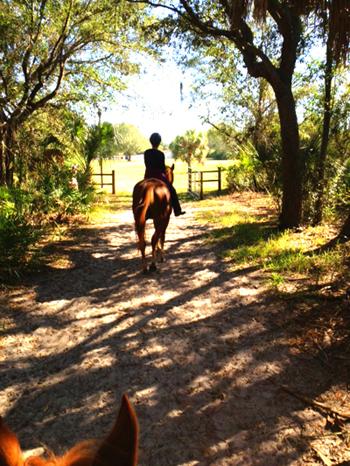 julie ober riding