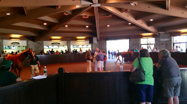 keeneland thoroughbred sales