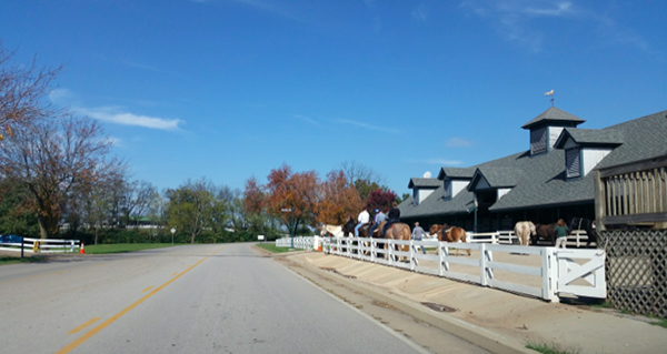 kentucky horse park stables