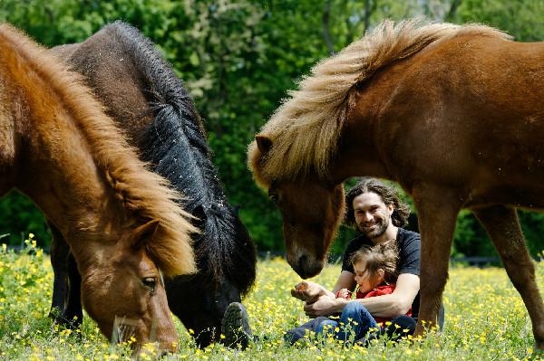 Gudmar Petursson and Icelandic Horses