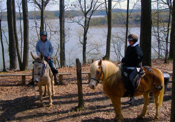 kentucky horse trails