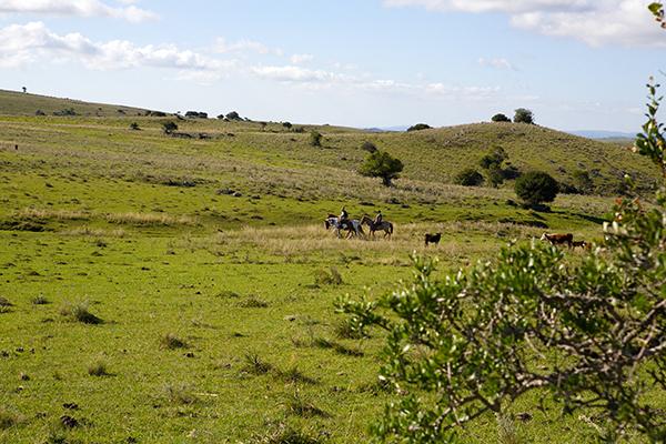 La Salamora rural riding in Uruguay