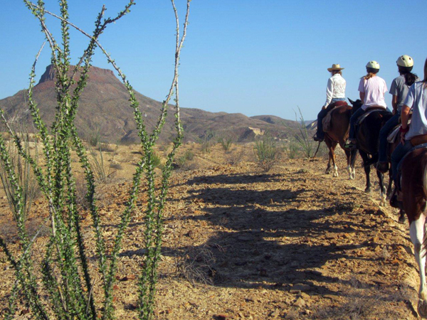 lajitas horseback riding texas ranch